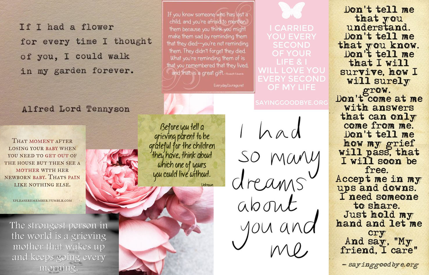 quotes banner - | She is, Sarah Jane